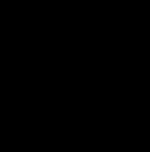 VŠE - logo černé - kulaté
